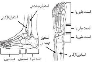 علائم روماتیسم مفصلی در پا