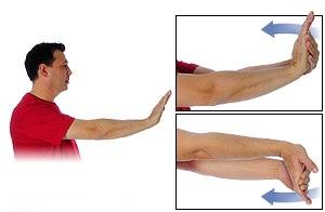 کشش عضله فلکسور مچ دست